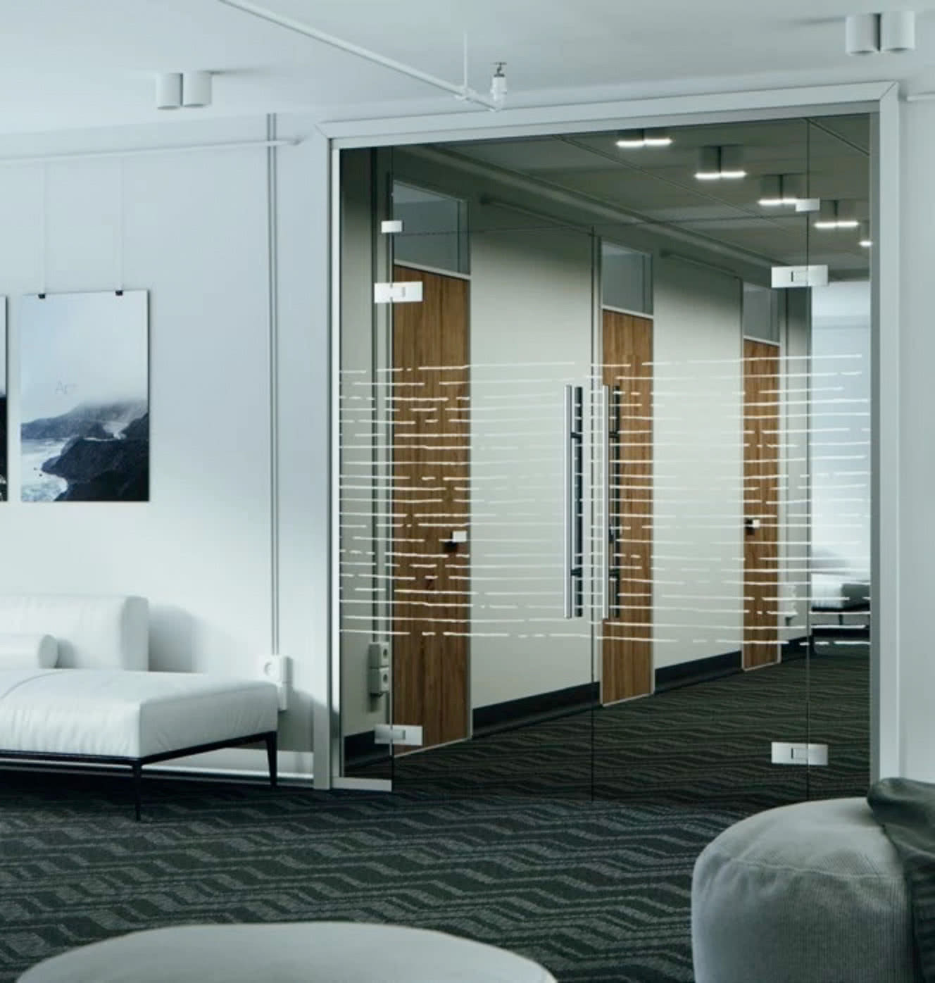 Modern Glass Doors - Frameless Glass Doors